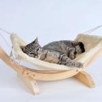 Für ein entspanntes Leben von Katze und Besitzer